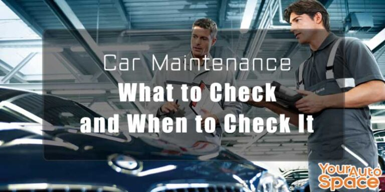 car revision in service. what should be checked.